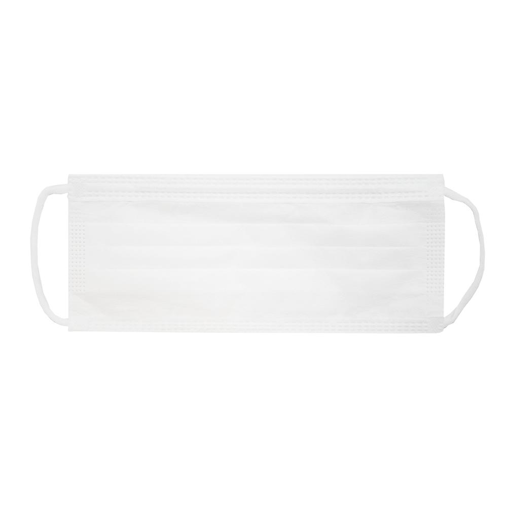 cleanroom earloop facemask
